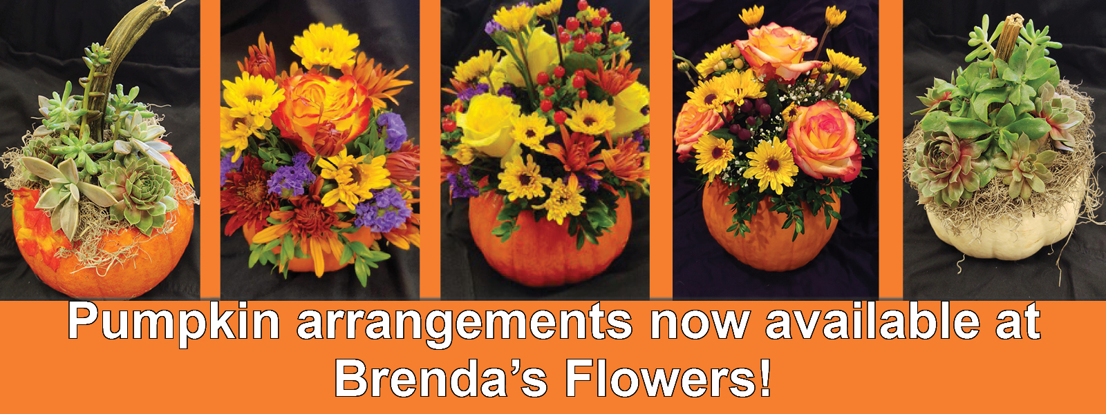 pumpkin arrangements | Brenda's Flowers | Westtown Amish Market