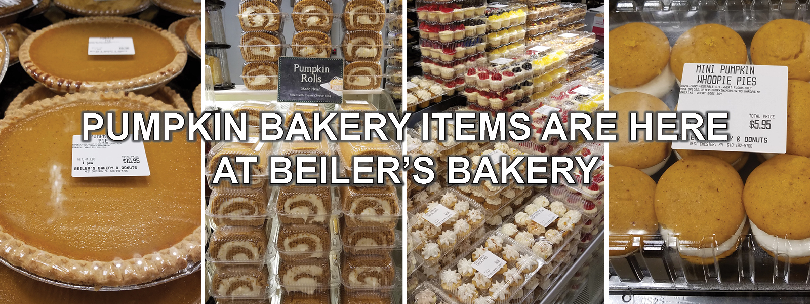 pumpkin products have arrived at beilers bakery